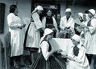 Fermentacya,  czyli o kiszonkach w zwrotach językowych