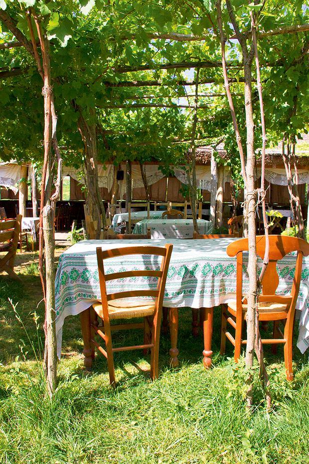 Restauracja w winiarni Asconi