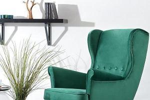 Kolorowe fotele - odważne i stylowe. Najładniejsze modele do 1000 zł