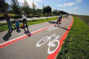 """W Bielsku-Białej pod budowę """"zielonego parkingu"""" mają wyciąć 271 drzew"""