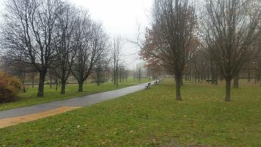 Park Bródnowski