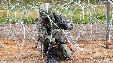 budowa płotu na granicy z Białorusią