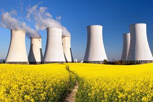 Mały atom zelektryzował Polaków. Czeka nas wysyp minielektrowni atomowych z USA?