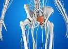 Zapalenie cewki moczowej: przyczyny, objawy, leczenie