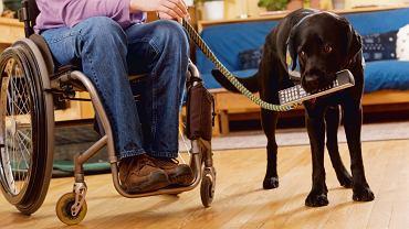 Co druga osoba poruszająca się na wózku inwalidzkim to chory na SM