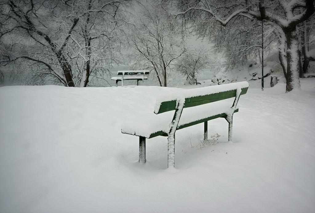 Śmierć dziecka na Górce Szczęśliwickiej. Urzędnicy usunęli ławkę, w którą uderzył 12-latek (zdjęcie ilustracyjne)