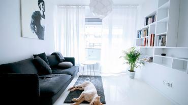 Centralnym punktem mieszkania jest pokój dzienny. Tu dla kontrastu została dodana prosta antracytowa sofa oraz dywan. Minimum mebli i dekoracji - mlecznobiałe, lejące się firany, delikatny abażur lampy Fillsta dający rozproszone światło, poręczny stolik kawowy oraz modułowy regał ścienny na książki stanowią pejzaż dla błogiego odpoczynku.