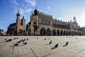 Wybory samorządowe 2018 Kraków kandydaci - sondaże - wyniki