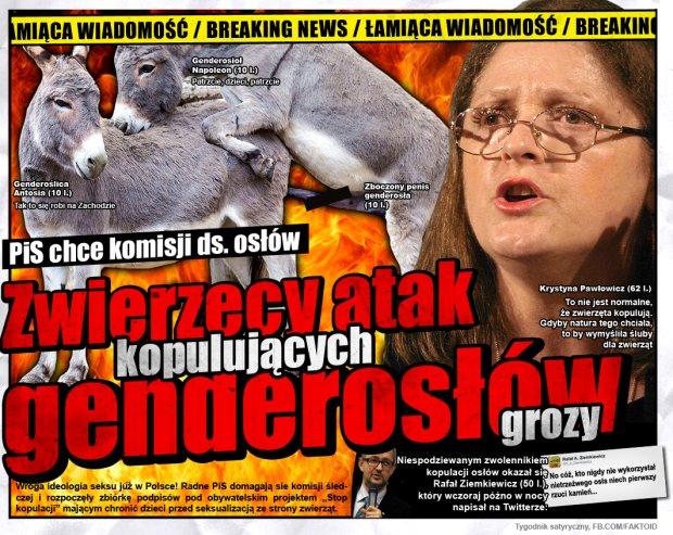 BREAKING NEWS: Genderosły Atakują -  - Faktoid