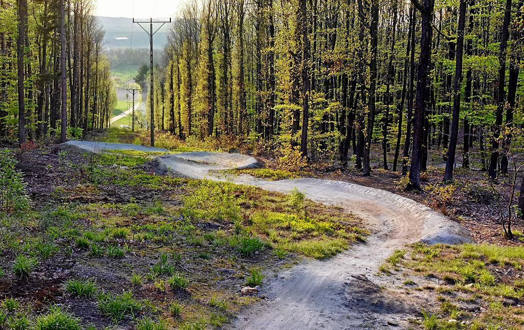 Na rowerze po Wzgórzach Strzelińskich. Singletrack przy Kopie Nowoleskiej