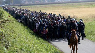 Uchodźcy na granicy ze Słowenią