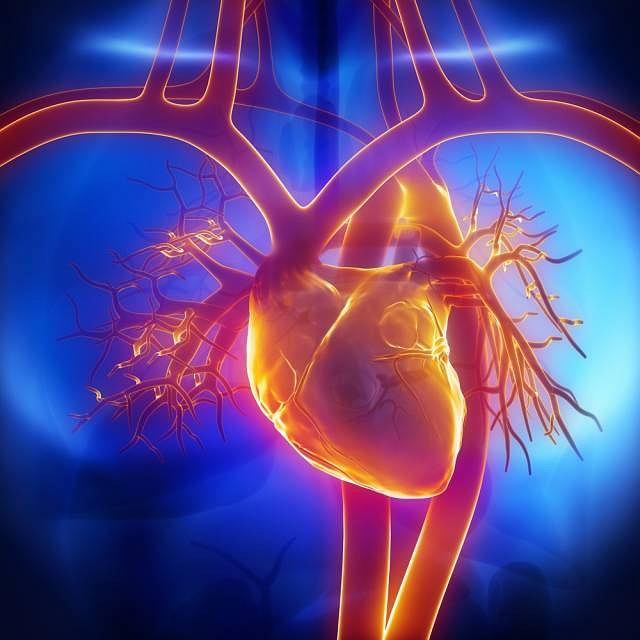 Zapalenie osierdzia może być spowodowane m.in. przebytą chorobą bądź przyjmowanymi, przez długi czas, niektórymi lekami