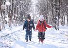 Jak wzmocnić odporność dziecka? Wspomagamy układ odpornościowy