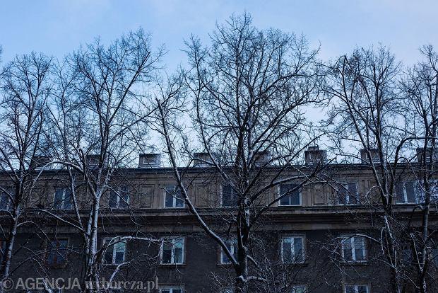 Zdjęcie numer 29 w galerii - Zima w Krakowie - śnieg przykrył ulice, domy, parki [GALERIA]