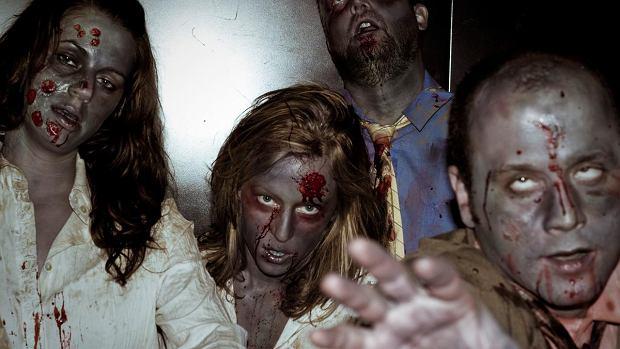 Cała prawda o zombie