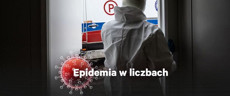 Koronawirus w Polsce. Michał Rogalski dla Gazeta.pl: Szczyt jest na horyzoncie