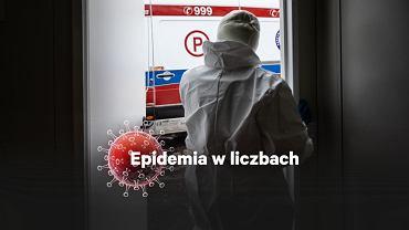 Epidemia w liczbach