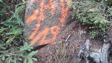 Pracownicy Karkonoskiego Parku Narodowego czyszczą skały po turystach