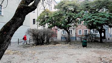 Zaniedbana działka przy ul. Koziej