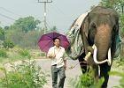 """Himalajskie bezkresy i grzeszne uciechy Bangkoku. Wciśnij """"play"""" i wyrusz w podróż"""