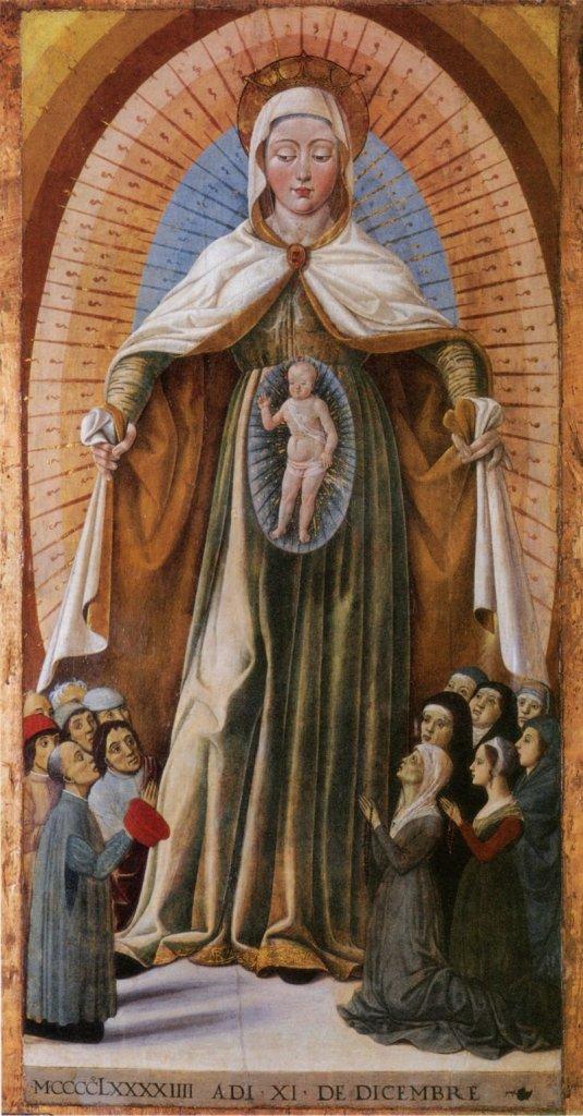 Znalezione obrazy dla zapytania maria mater misericordiae
