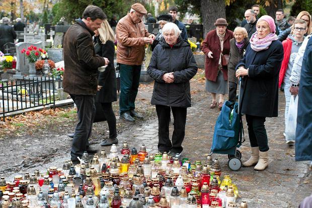 Zdjęcie numer 76 w galerii - Wszystkich Świętych we Wrocławiu. Cmentarze w kwiatach [ZDJĘCIA]
