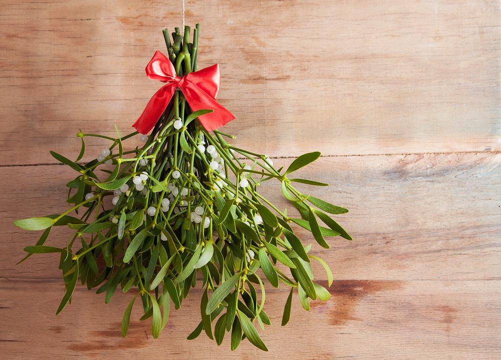 Ozdoby świąteczne DIY - jemioła. Zdjęcie ilustracyjne
