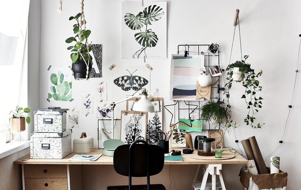 Plakaty, rysunki i grafiki na ścianę - kreatywna przestrzeń