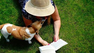 Lato z książką