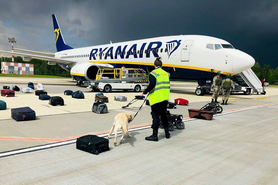 Białoruskie służby przy pomocy psa sprawdzają bagaże z samolotu Ryanaira (lot z Aten do Wilna) na płycie lotniska w Mińsku w poszukiwaniu ewentualnej bomby, 23 maja 2021 roku.