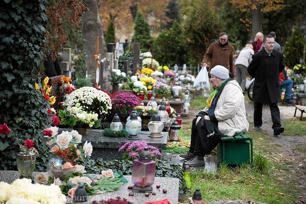 Zdjęcie numer 75 w galerii - Wszystkich Świętych we Wrocławiu. Cmentarze w kwiatach [ZDJĘCIA]