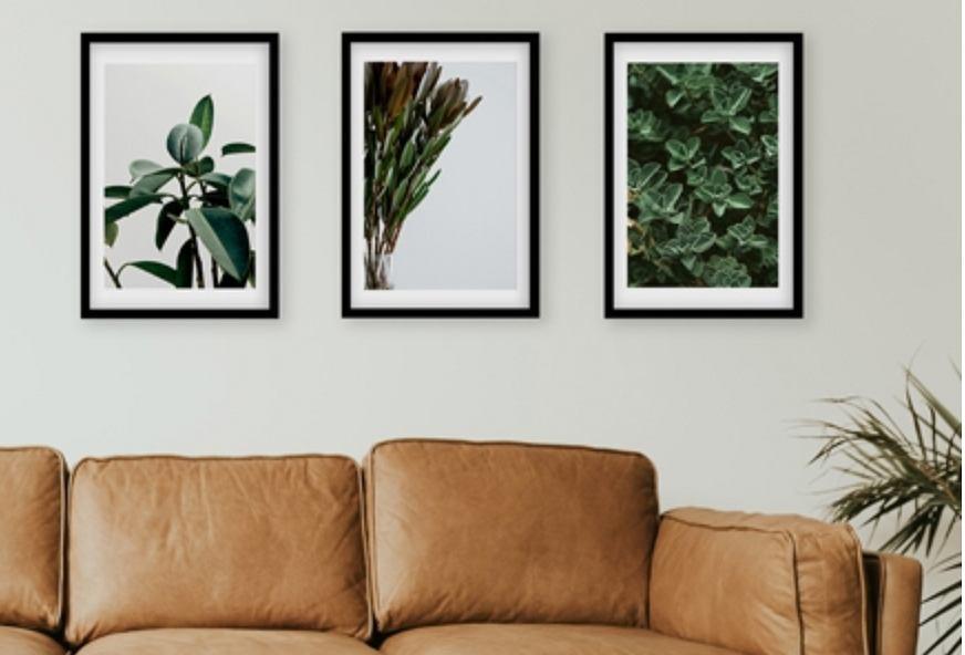 Plakaty z naturą.