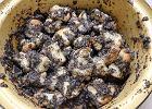 Makiełki lub makówki śląskie - przepis na makowy przysmak na świąteczny stół