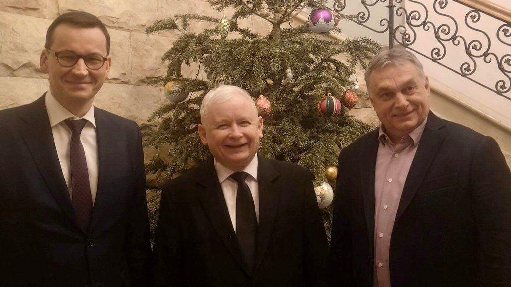 Mateusz Morawiecki, Jarosław Kaczyński, Viktor Orban