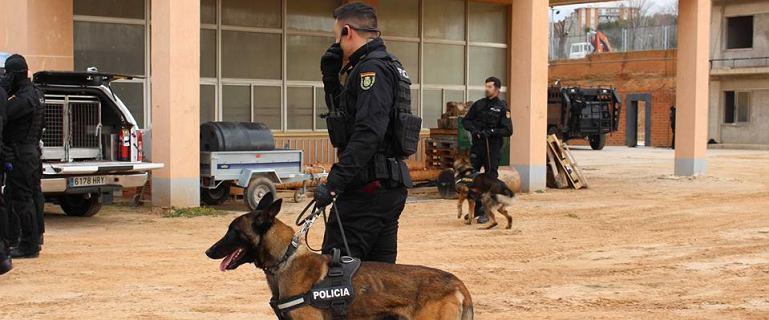 Hiszpania. Udaremniono zamach terrorystyczny na procesję w Sewilli