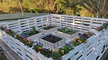 Kwietnik do ogrodu. Ciekawe stojaki ogrodowe. Zdjęcie ilustracyjne