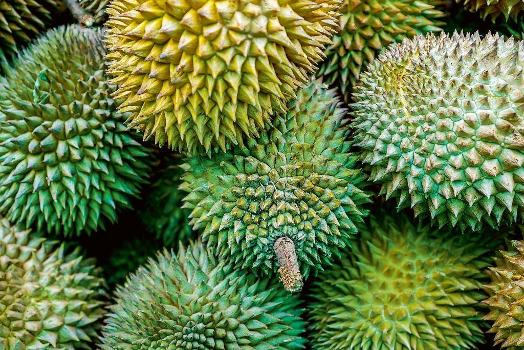 Owoce duriana
