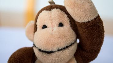 George to ciekawska małpka, która mieszka z Panem w Żółtym Kapeluszu