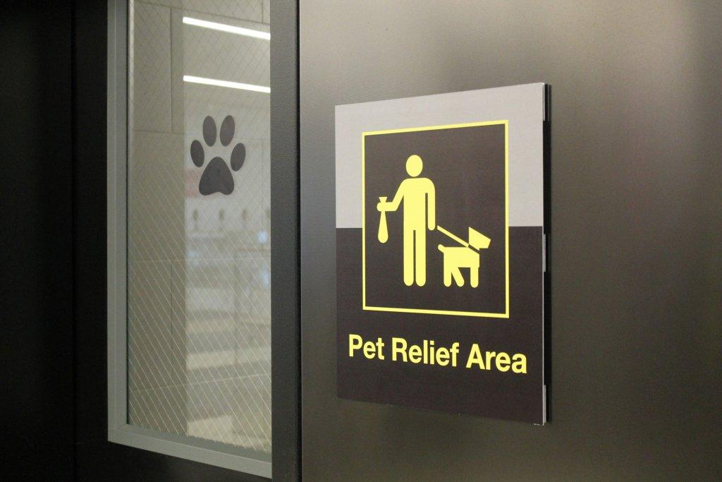 Na lotniskach pojawiły się specjalne toalety dla psów