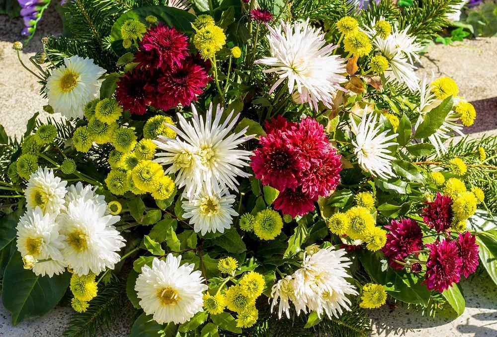 Wiązanki na Wszystkich Świętych 2020 z żywych kwiatów prezentują się bardzo dobrze. Zdjęcie ilustracyjne