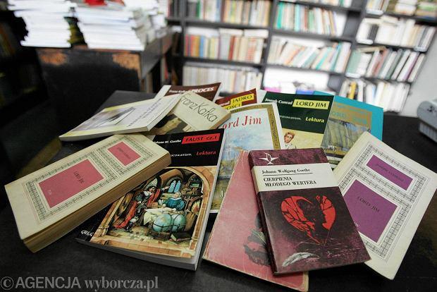 Na Języku Polskim Powinno Się Omawiać Jedynie Książki