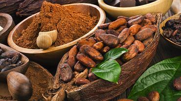 Czekolada początkowo pojawiła się w Europie w formie ziaren kakaowca i nie była zbyt popularna (fot. Shutterstock)