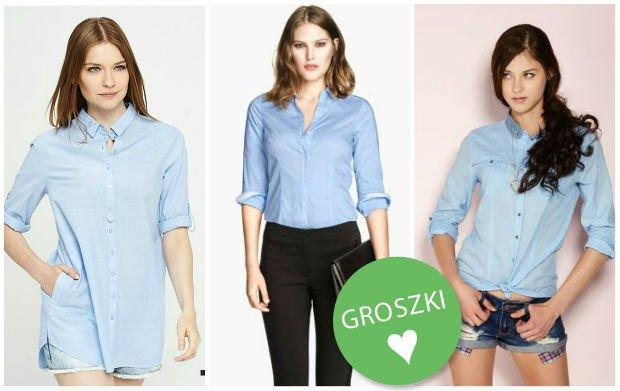 błękitne koszule damskie