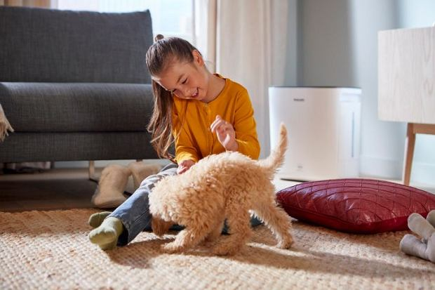 Komfort oddychania zdrowszym powietrzem w Twoim domu