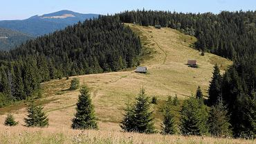 Szlaki na Turbacz: poznaj trasy dobre dla początkujących, jak i bardziej zaawansowanych miłośników gór