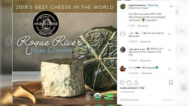 Nie z Francji, nie z Holandii. Najlepszym serem na świecie po raz pierwszy został ser wytwarzany w USA.