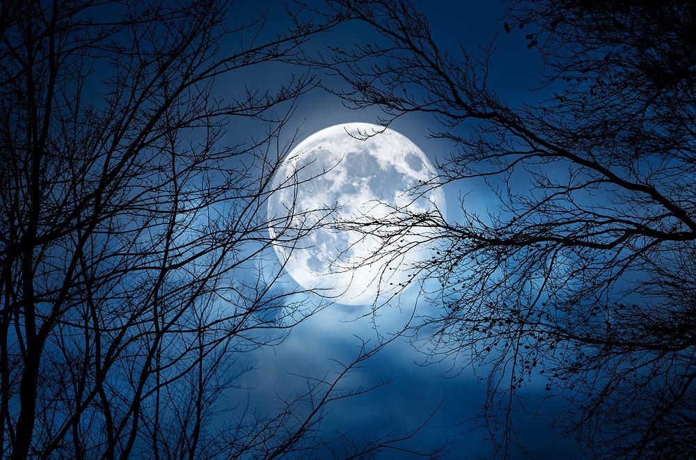 Fazy Księżyca: styczeń 2021. Zdjęcie ilustracyjne