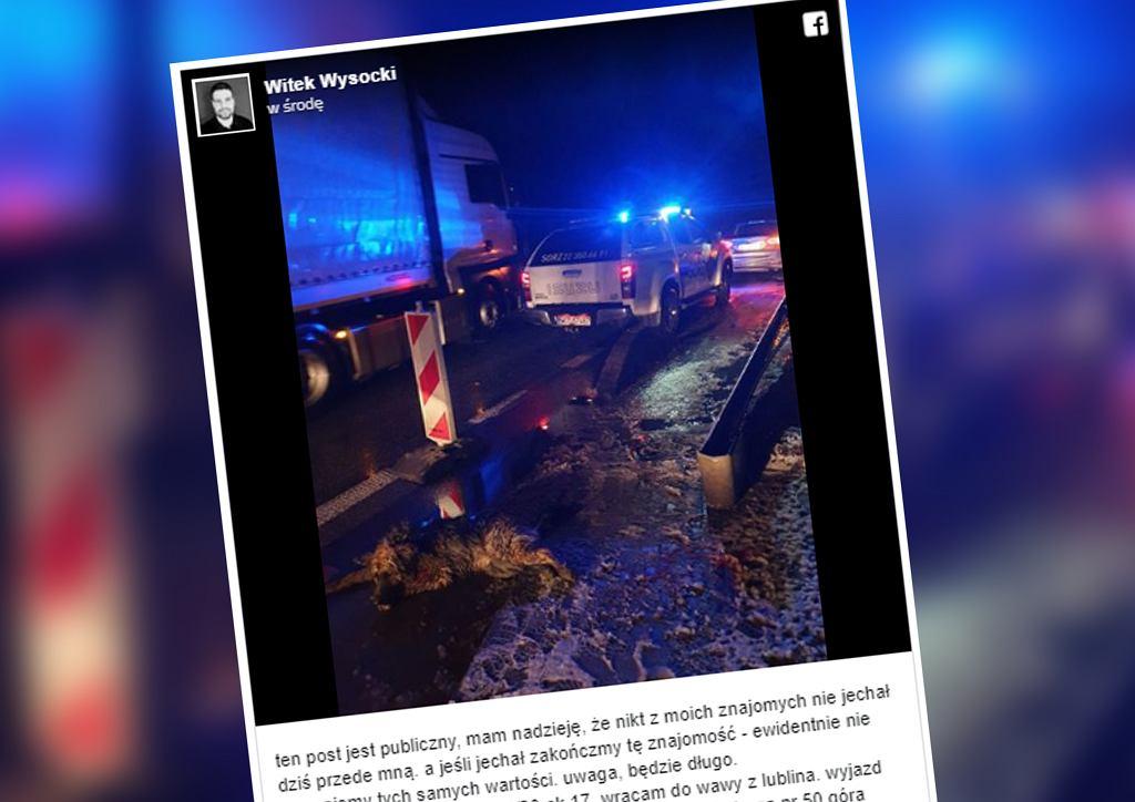 Potrącony pies czołgał się ostatkiem sił, a kierowcy go omijali. Zatrzymał się tylko jeden człowiek