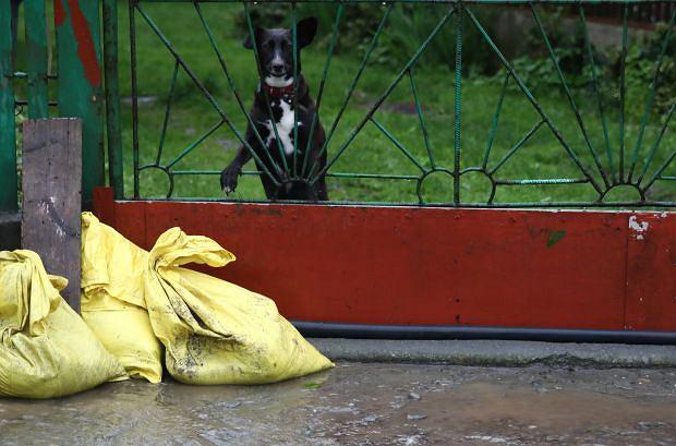Trwające kilka dni ulewy doprowadziły do znacznego wzrostu poziomu rzek. Do podtopień doszło m.in. w Czarnochowicach w Małopolsce
