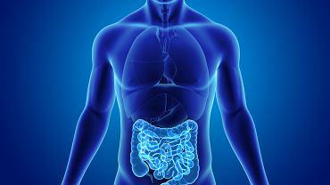Perforacja pojawia się, kiedy dochodzi do zniszczenia wszystkich warstw przewodu pokarmowego, co prowadzi do przedostawania się treści pokarmowej poza przewód pokarmowy.